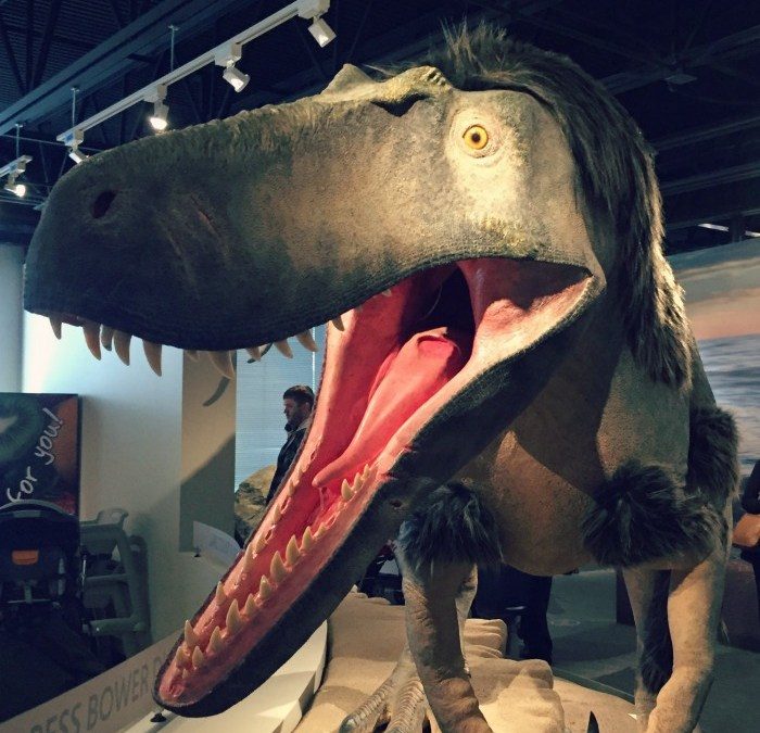 Bess Bower Dunn Museum: Explore Lake County's History….and Dinosaur!