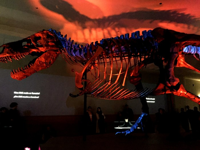 Sue, the most complete and largest T.Rex ever found, has a new home at the Field Museum in Chicago