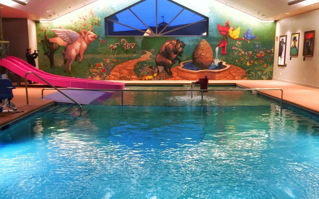 Family Fun Stay at the Fairfield Inn & Suites Fair Oaks Farm