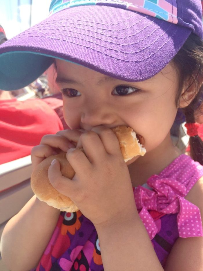 8 reasons to go to a Chicago Dogs Baseball Game with the family
