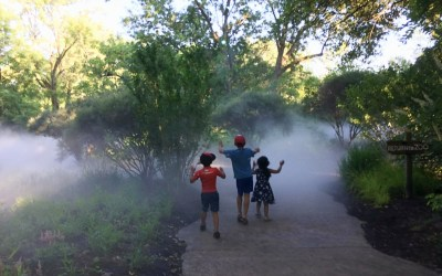 Why the Entire Family Will Love Fort Wayne Children's Zoo
