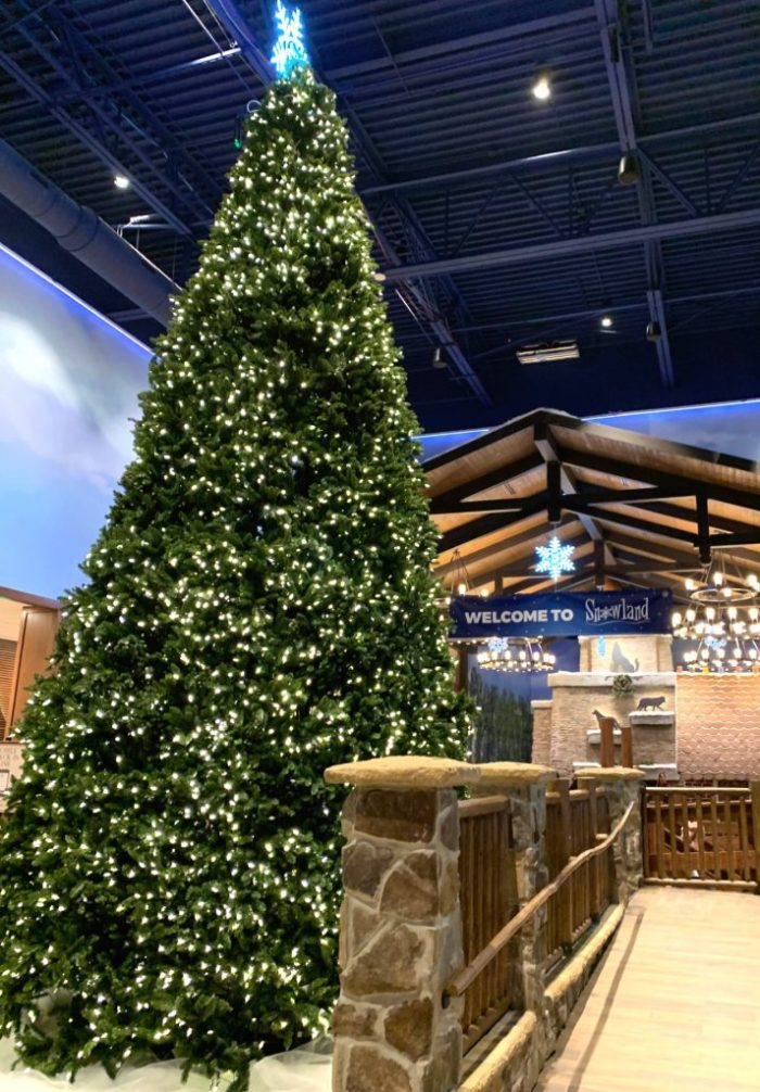Great Wolf Lodge Gurnee celebrates the holiday with their Snowland celebration featuring indoor snow showers, Santa visits, hot cocoa bar, and more.