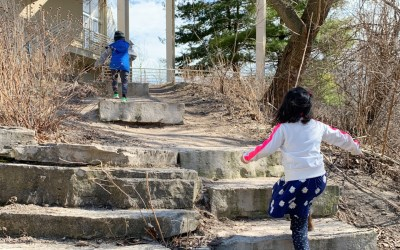 Family Guide to Peggy Notebaert Nature Museum in Chicago