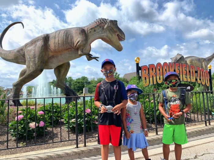 Dinos Everywhere, a temporary exhibit with more than 40 larger-than-life animatronic dinosaurs, have invaded Brookfield Zoo. Here's what you need to know before you go visit the Zoo.