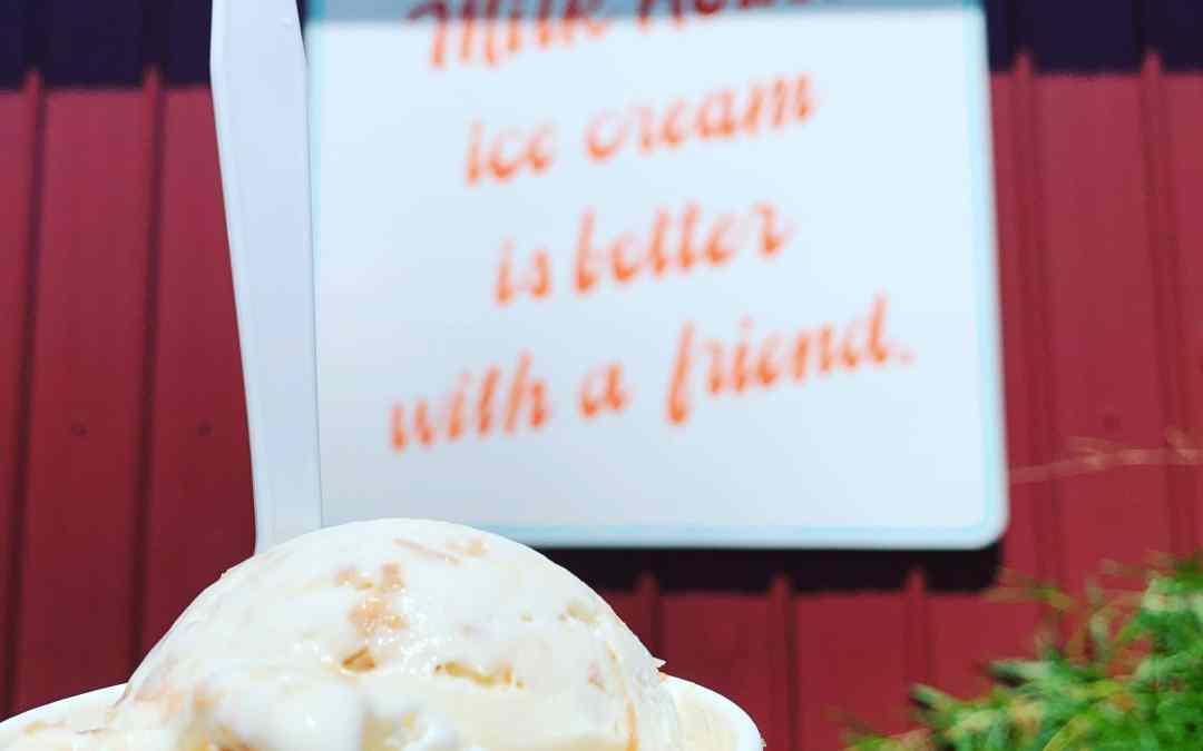 Farm Fresh Ice Cream from The Milk House Ice Cream in Pingree Grove