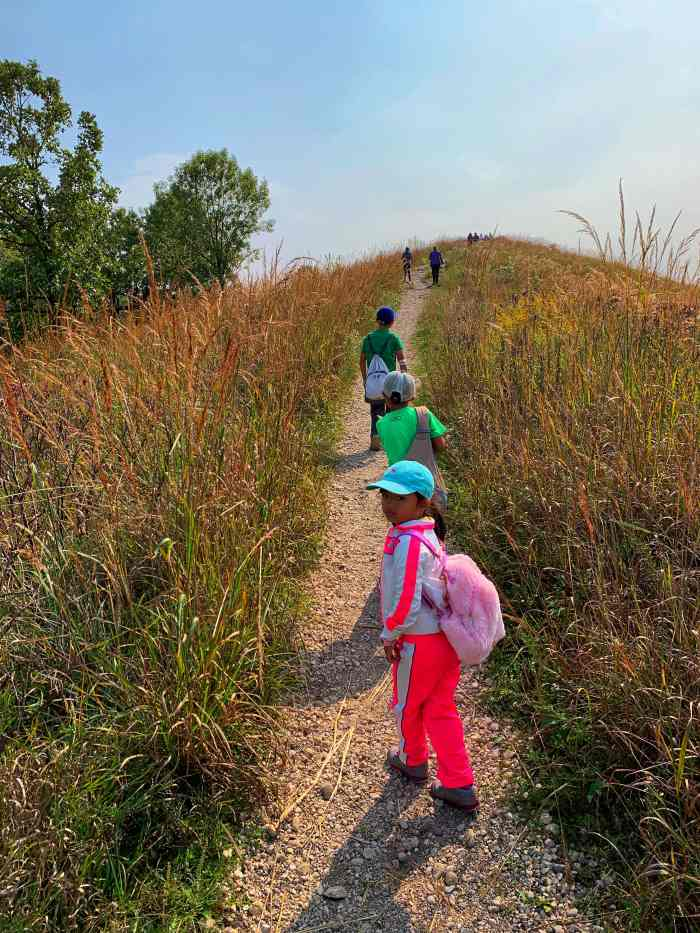 Enjoy the great outdoors with the family at Glacial Park Conservation Area in Ringwood with kames, wooded trails, bogs, and marshes.
