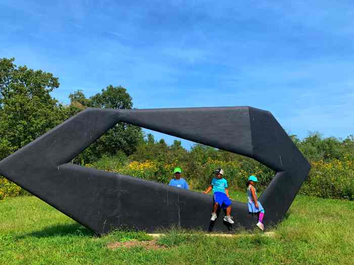 Art and nature can be best seen at Nathan Manilow Sculpture Park. Here are tips you need to know before you go on a sculpture hunt.