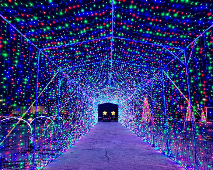 Count down to the holidays with these holiday activities with the family. Find ideas for crafts, events in Chicagoland, and more.