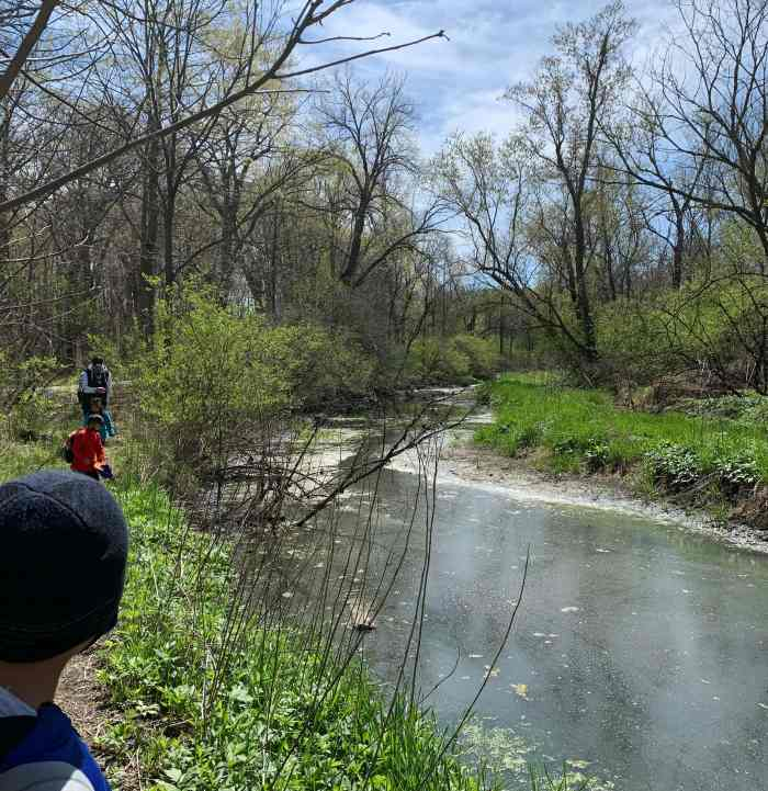 Take a hike through Joliet's Pilcher Park. Find a Nature Center, plenty of wooded areas, streams, footbridges and Bird Haven Greenhouse.