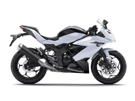 2014 ninja 250rr mono white (1)