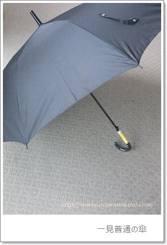 世界最強の傘とも言われるブラントアンブレラ