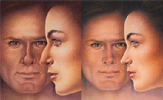 Indicações da Cirurgia Nasal (Septoplastia / Turbinectomia)