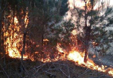 Comienza a regir prohibición de fuegos y quemas al aire libre
