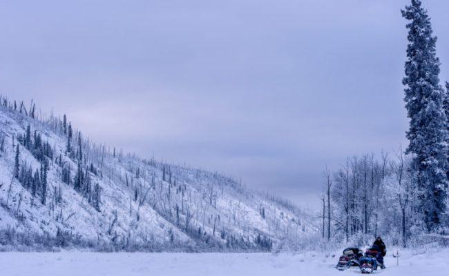 A Trail In The Frozen Forest Photographer Brescia