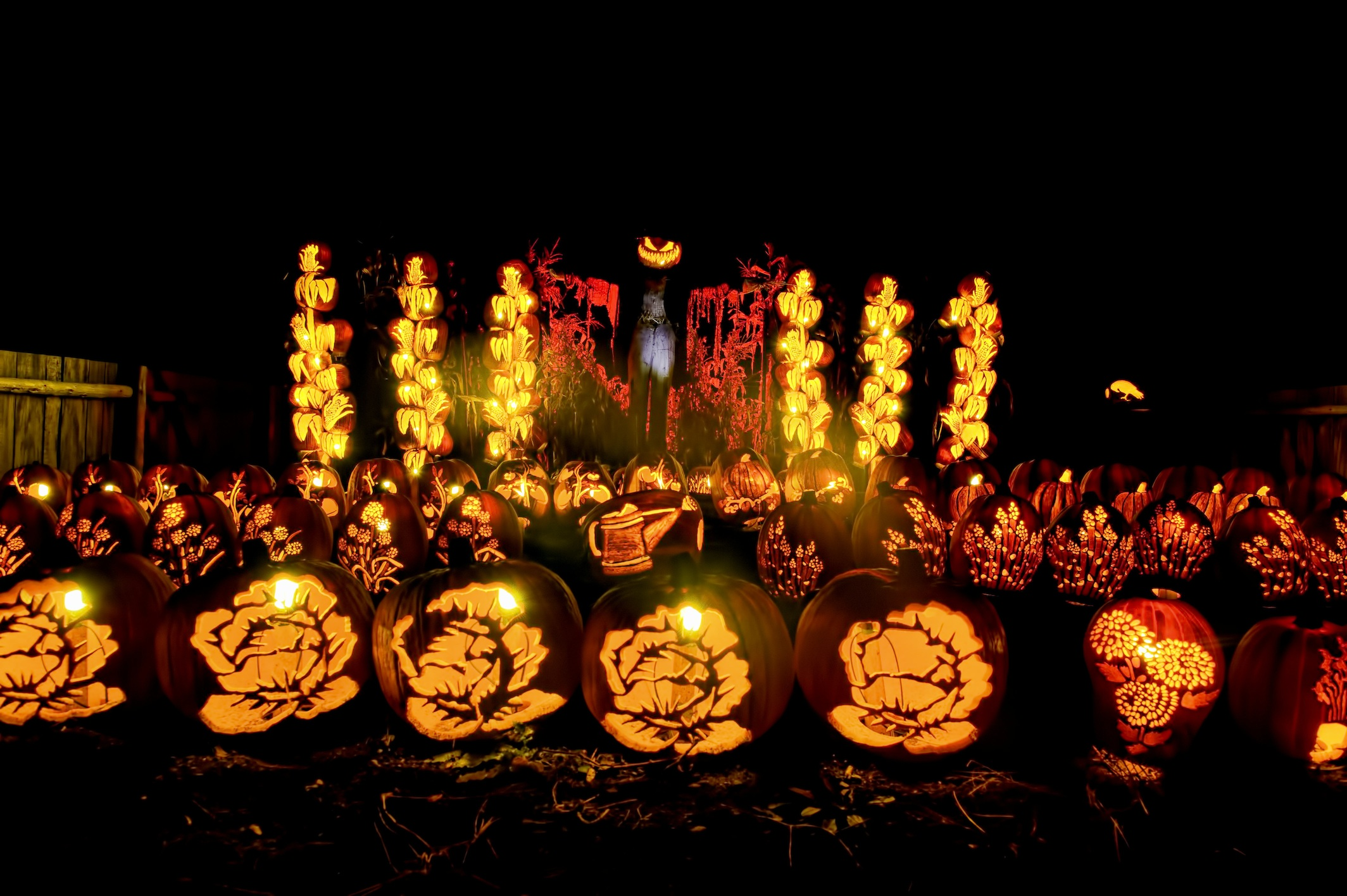 Upper Canada Villages Pumpkinferno is HOT  Ottawa Family Living Magazine