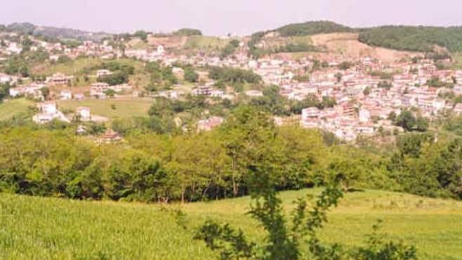 La scommessa dei sindaci della Baronia su boschi e sorgenti  Ottopagineit Avellino