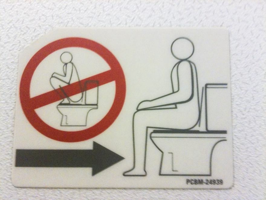 Asian toilet instructions