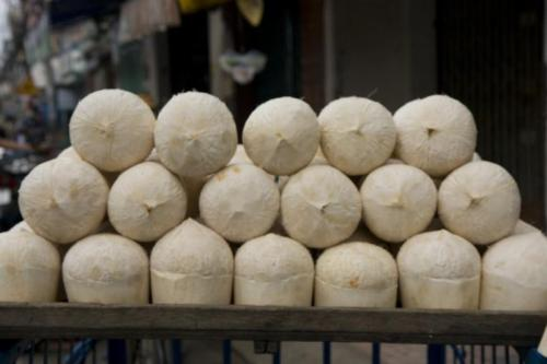 coconuts: dua