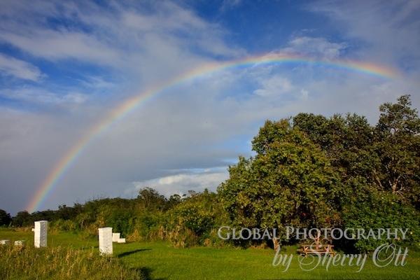 honey rainbow