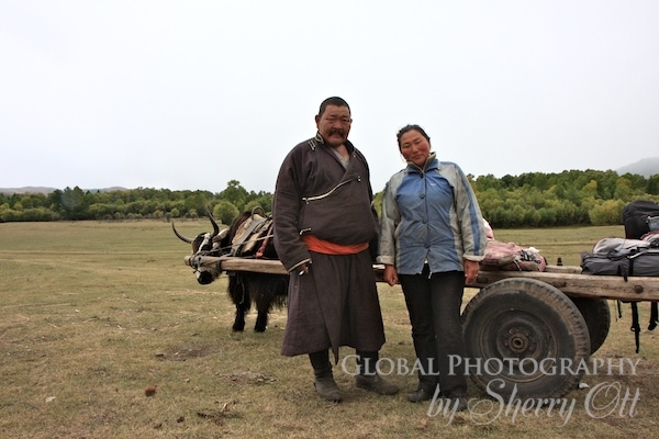 Mongolian family and ox cart