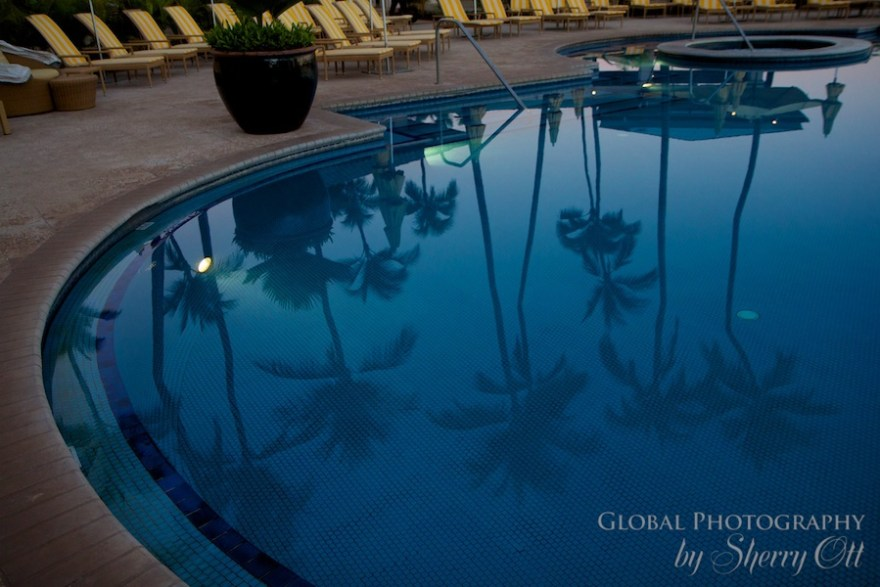 Palm trees reflect in Manele Bay Resort pool