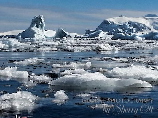 Brash ice that we had to paddle through - antarctica
