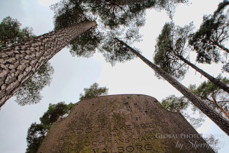 Gravesight among trees