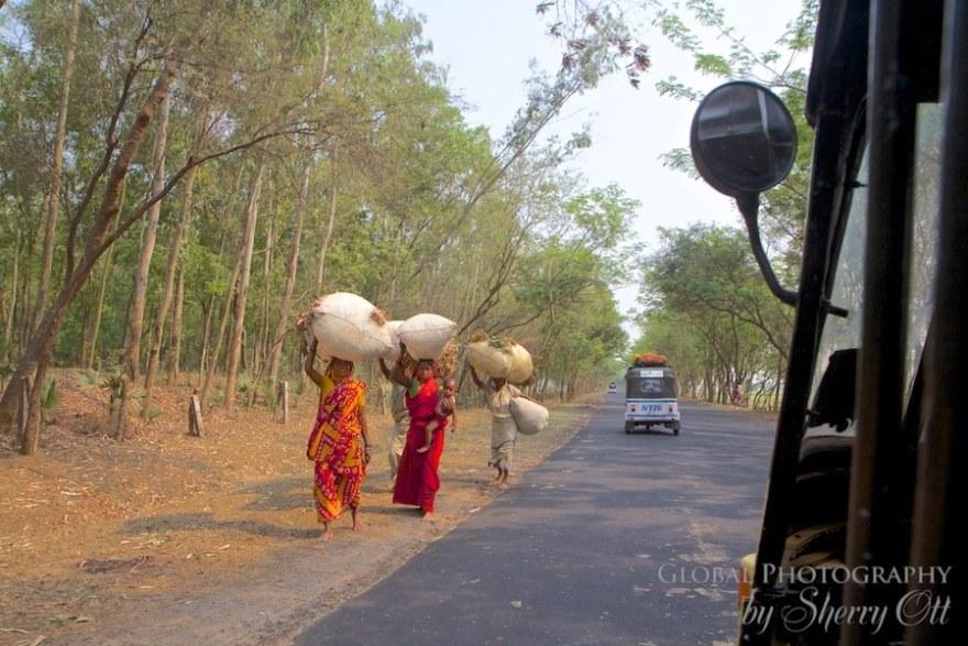 Rickshaw Run Window (11)