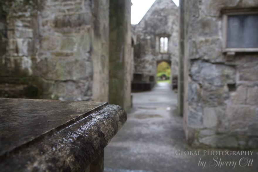 rainy day things to do Ireland muckross abbey