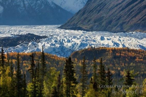 Matanuska Glacier as seen fromGlenn Highway