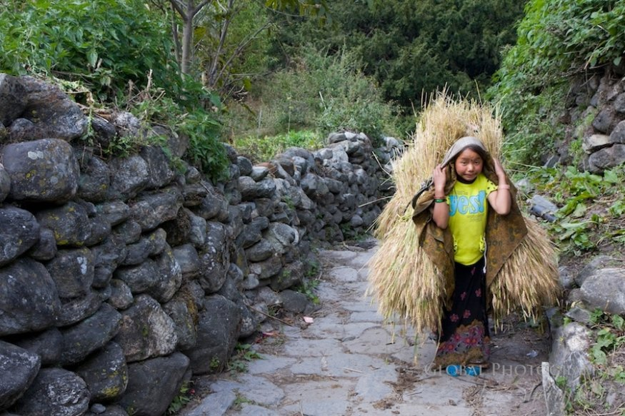 Fall Colors Nepal 2