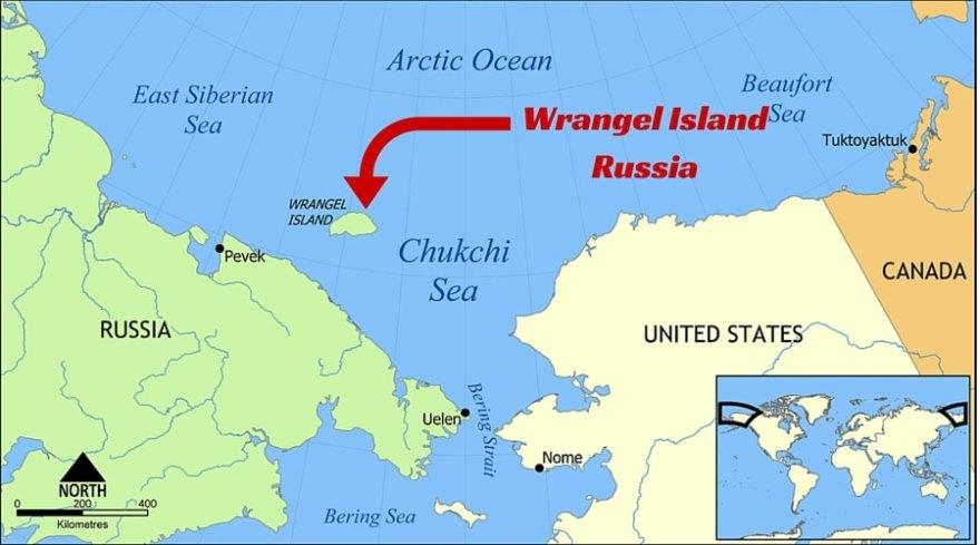 wrangel island map
