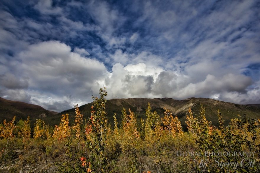 Dalton Highway Autumn in the Arctic