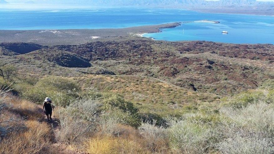Un-cruise adventures hikes 3 (1)