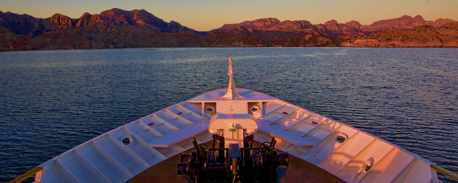 Un-cruise adventures sea of cortez