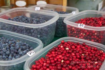 Tanana Valley Farmers Market Fairbanks