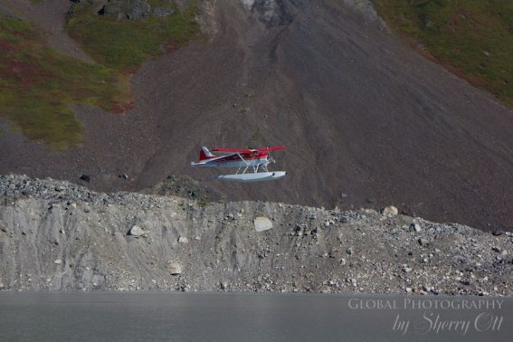 Float plane landing on a glacial lake in Denali