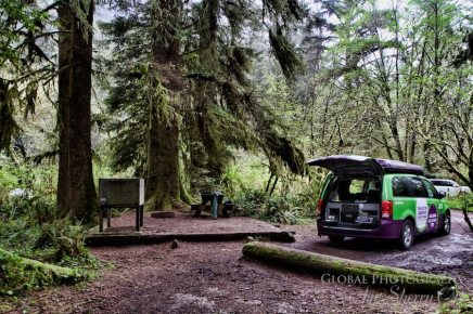 Redwoods national park campground