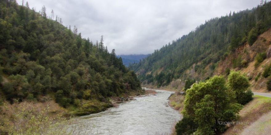 Northern Californ Klamath Forest