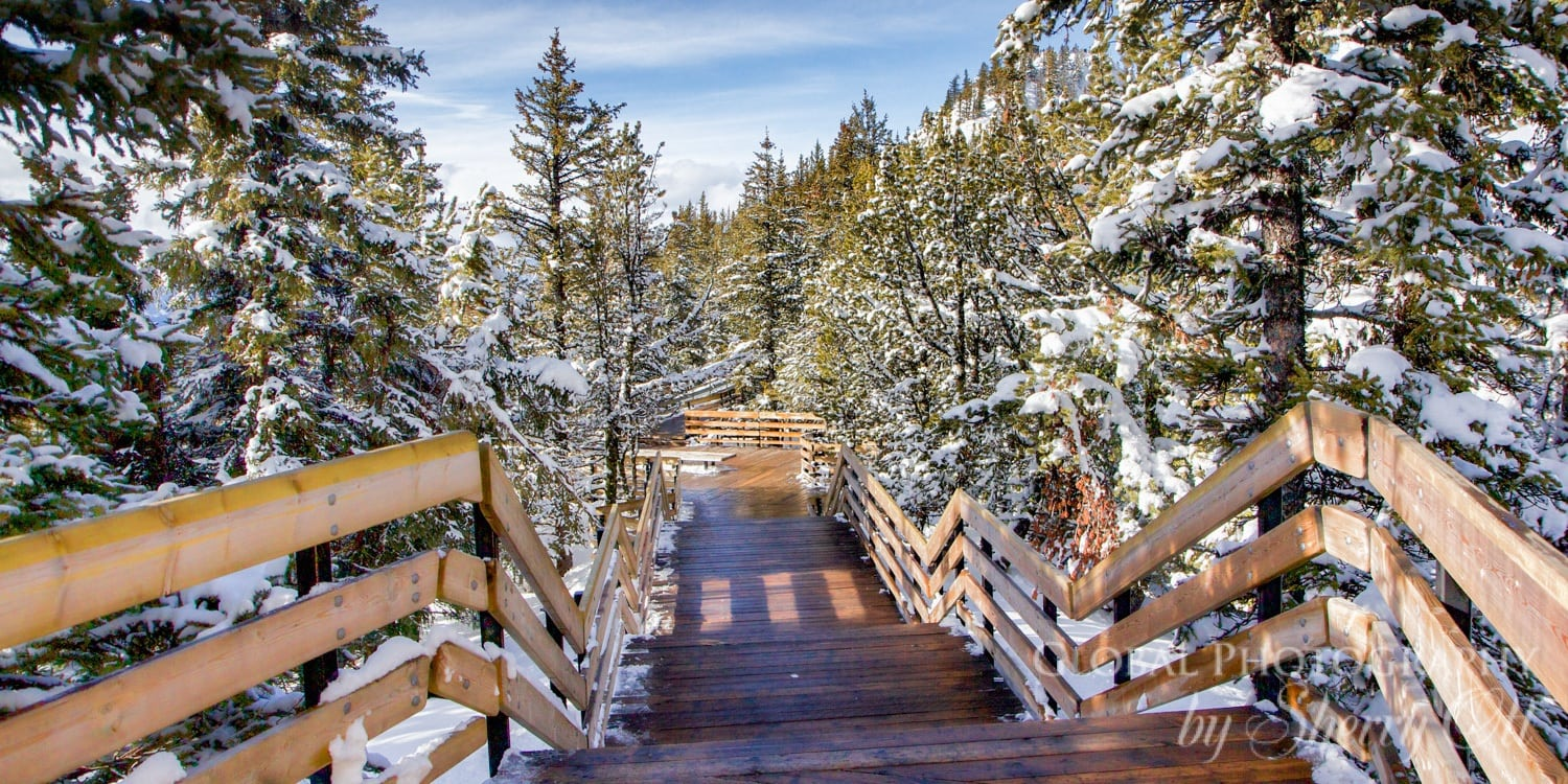 sulphur mountain boardwalk