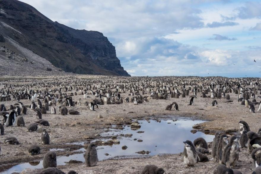 Franklin Island Ross Sea