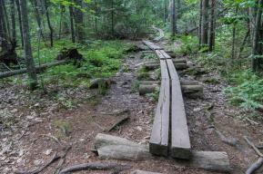 Maine Road Trip Camden Hills State Park