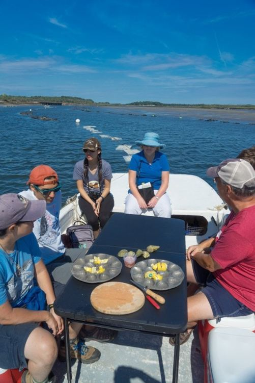 Maine Oyster tour