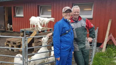 norway itinerary goat safari