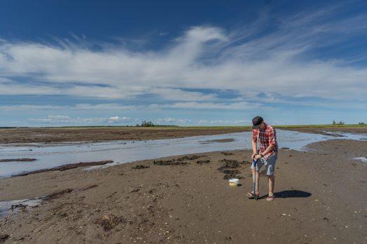 Acadian Peninsula clamming