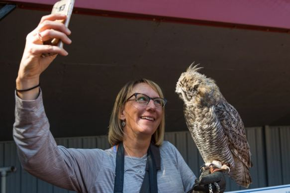 Alberta birds of prey horn owl selfie