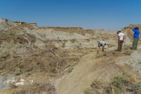 Canadian Badlands Dinosaur Provencial Park