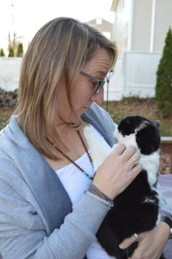 Letting go of pets to travel