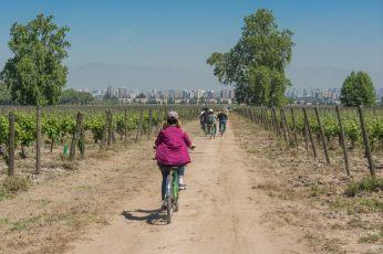 Santiago wine tours biking