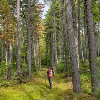 Maine huts and trails guided
